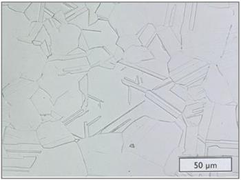 Microstructure - ULTIMET wrought plate